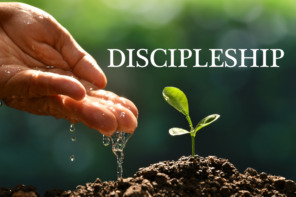 Whole Life Discipleship